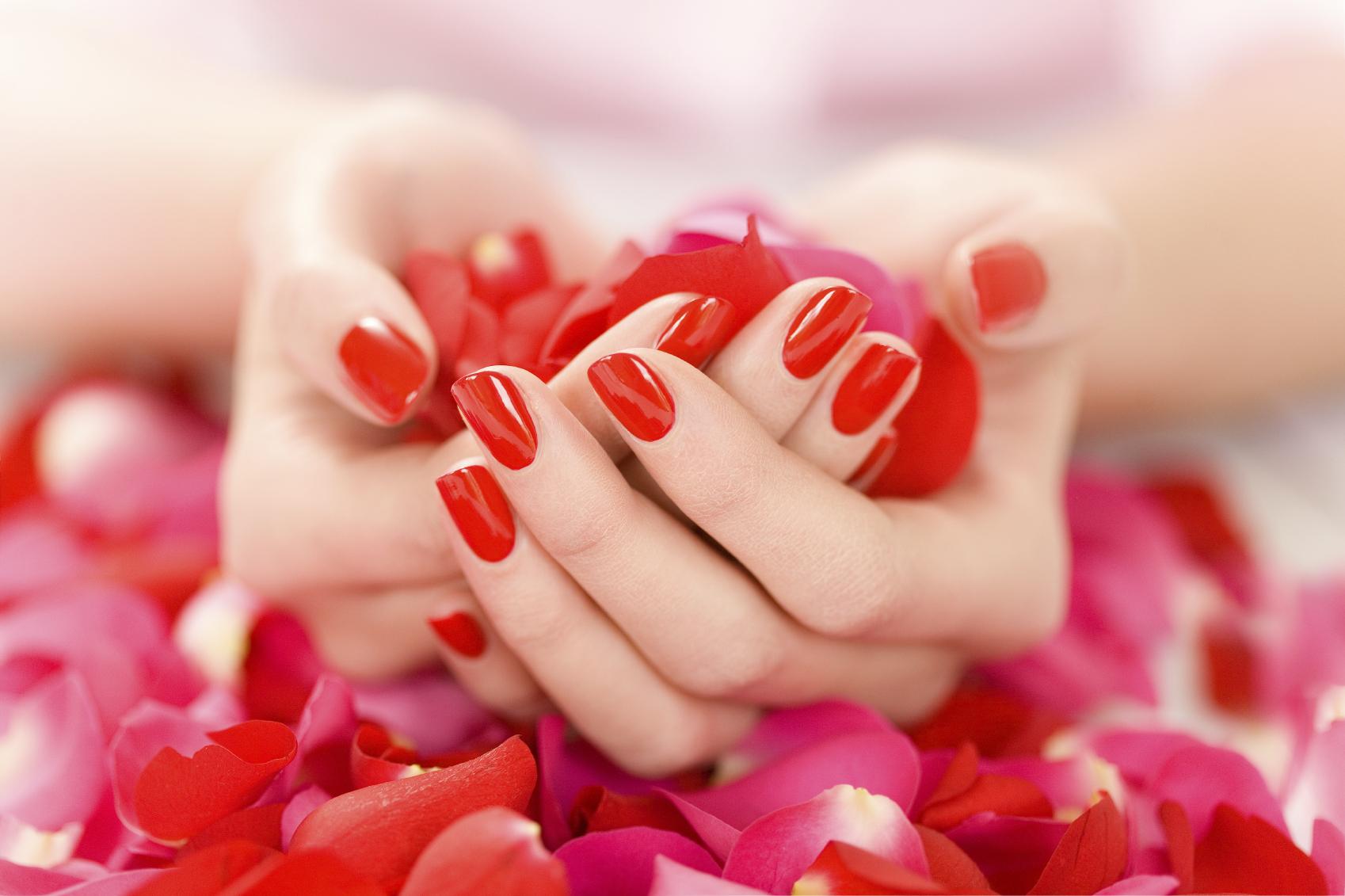 Lotus Nail & Spa