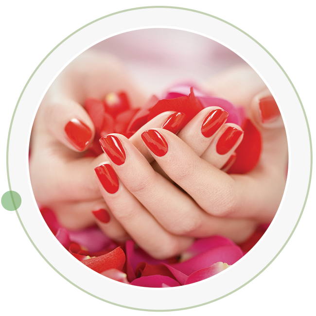 Services Lotus Nail Spa